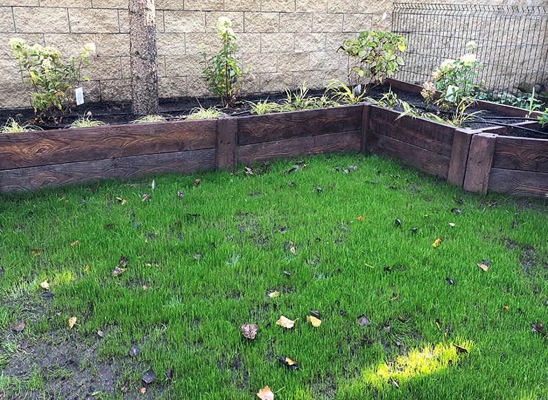 Imitacja drewna w ogrodzie